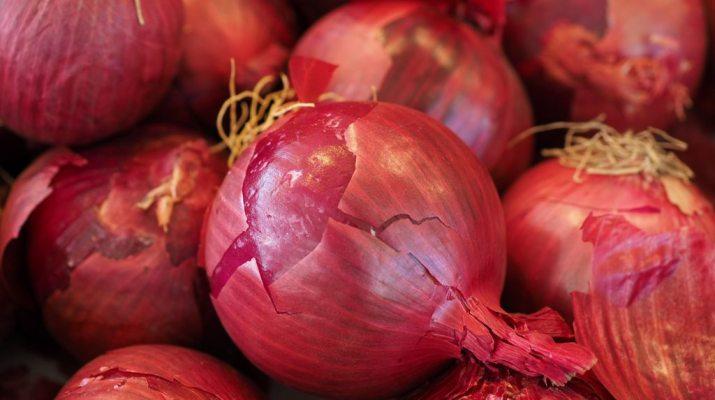 Aajcha kanda bhaav onion rates today 19 May 2018 Nashik, Lasalgaon, नाशिक, लासलगाव सह राज्यातील बाजारपेठेतील आजचा कांदा भाव मे, आजचा कांदा भाव, नाशिक कांदा भाव, दर लासलगाव बाजारपेठ lasalgoan kanda market आजचे बाजार भाव कांद्याचे दर 2018 kanda bajar bhav live latest apmc news agriculture produce market