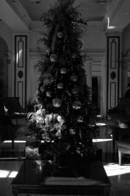 Christmas Tree, NOLA