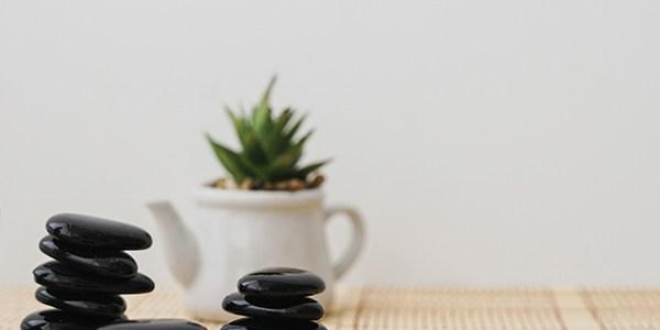 3 Ways to Embrace Holistic Health