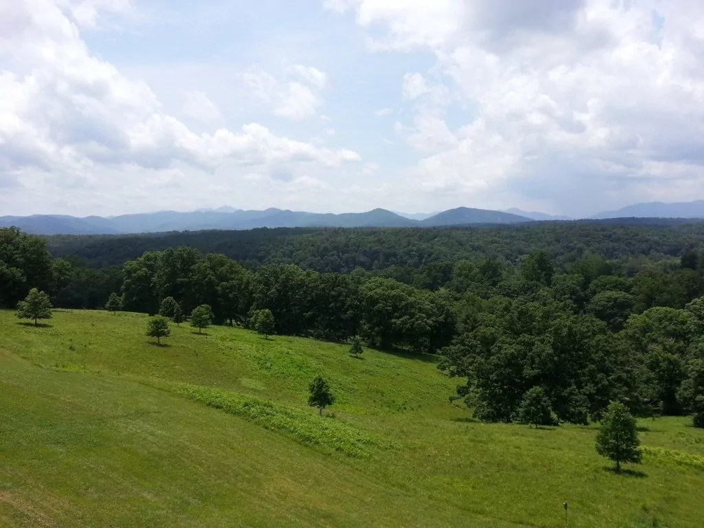 View from the Biltmore's back patio