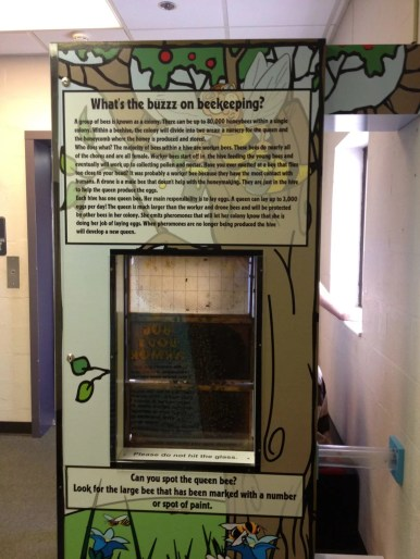 Bee Keeping exhibit (make sure to look out the window) on the third floor
