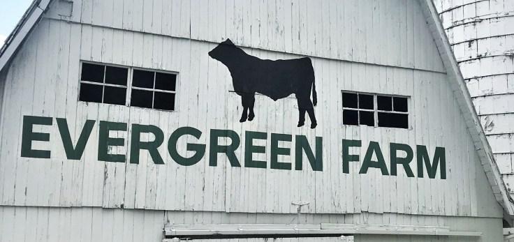 EvergreenFarmSIgn