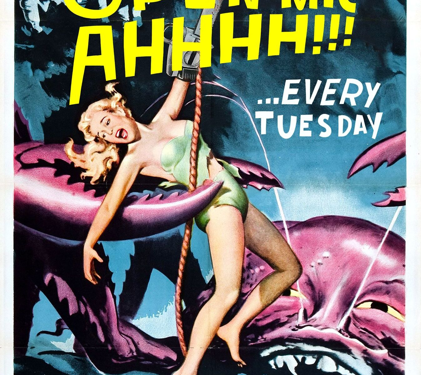 AHHHH!!! Open mic at Tin Dog Tavern every Tuesday
