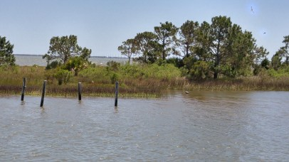 See the small white spot on the island? And the heron in the water? Yeah, they fought....