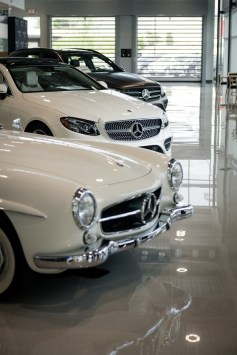 Nashville-Wine-Auctions-Mercedes-Benz-of-Music-City-by-Weatherly-Photography-180424-9371 small