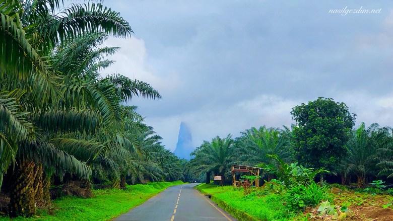 Sao Tome ve Principe Gezilecek Yerler, Sao Tome ve Principe Gezi Rehberi, Rolas Adasi,ilheu das rolas, nasil gezdim, nasilgezdim,Ekvator Dünyanin, pico cao grande