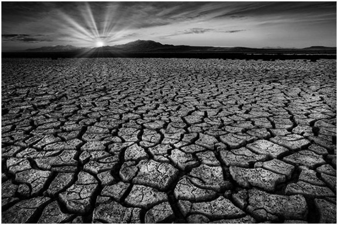 Liliana Hecker - Drought 101 - Salon IOM BW