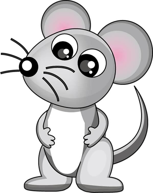 Мишка картинки для дітей | Своїми руками