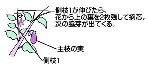 nasu-tekisin001