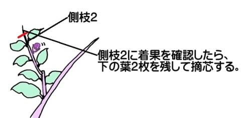 nasu-tekisin003