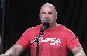 Dana White UFC 249