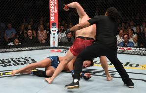 MMA brutalny nokaut
