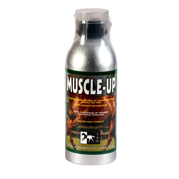 muscle up f2 63