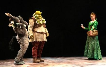Shrek, Donkey, And Fiona
