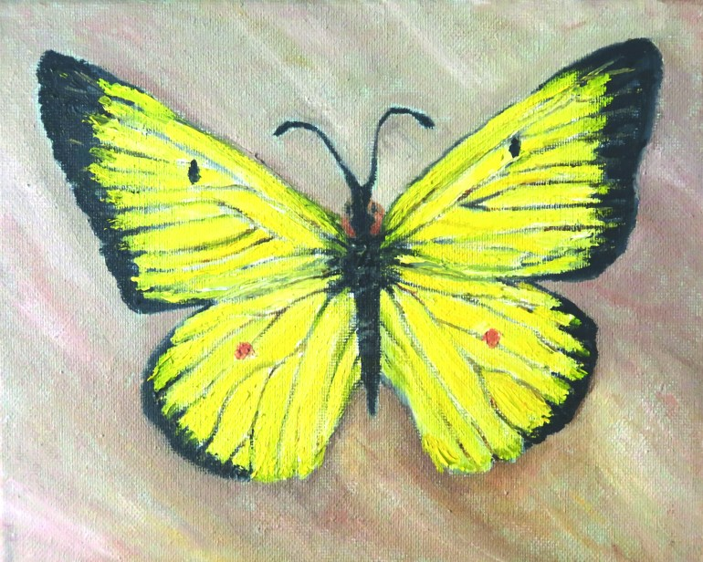 Butterfly of Hope oil painting 300 dpi by Natalie Buske Thomas