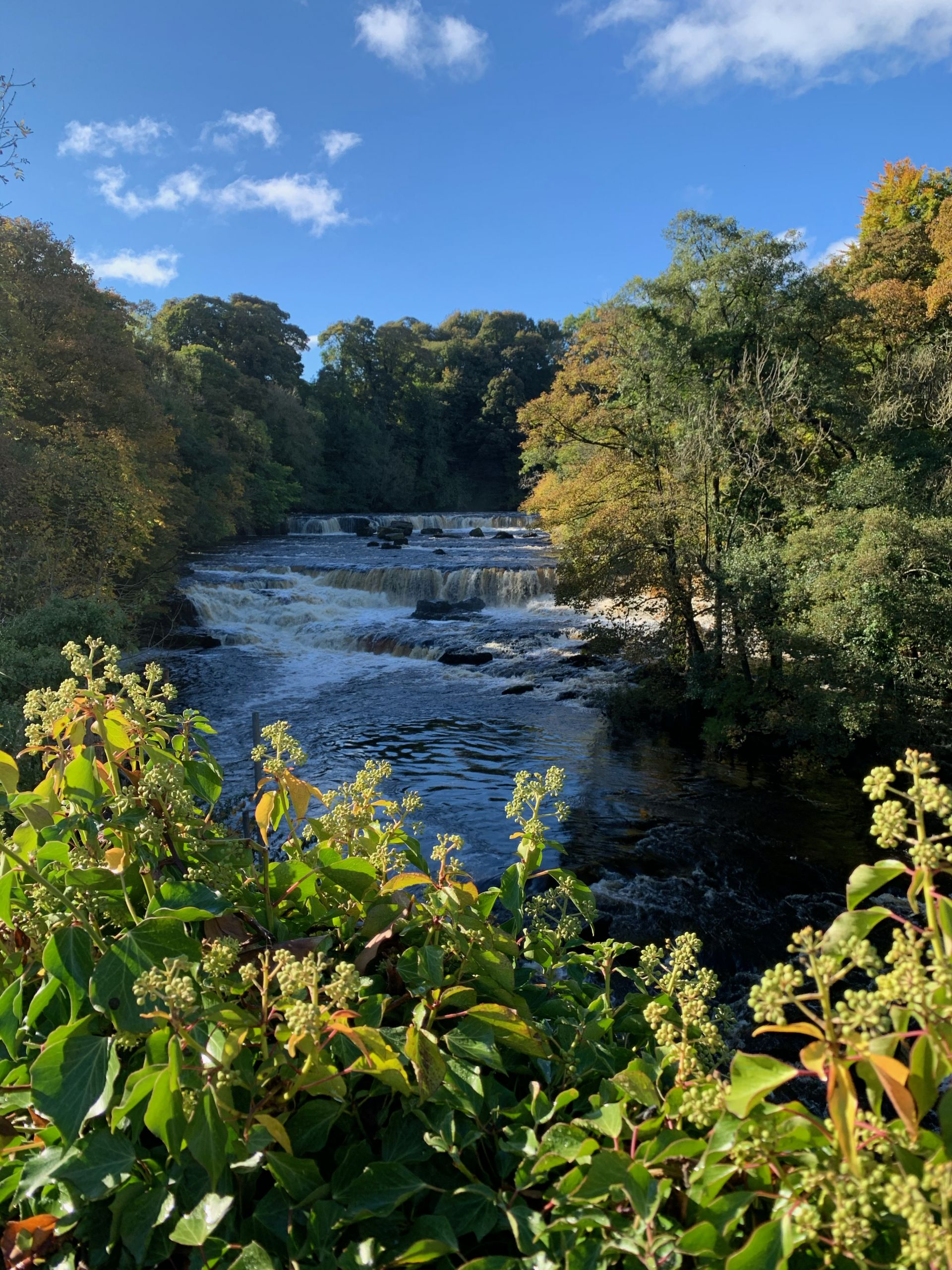 Aygarth Falls in the Yorkshire Dales