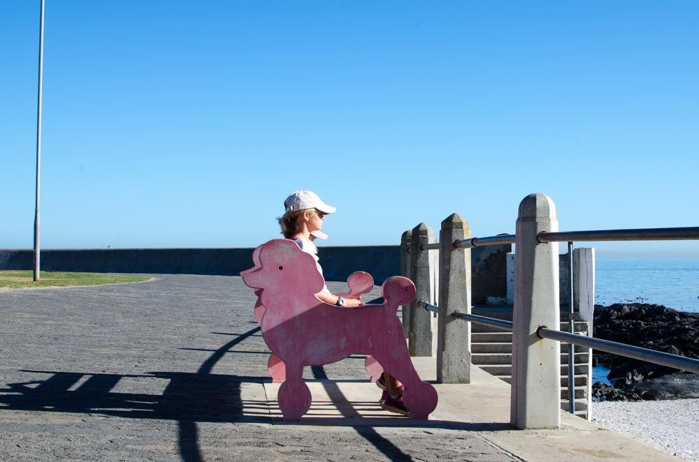 Cape Town, a children's city holiday