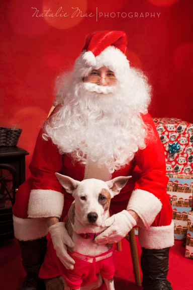 Buster dog, Bobbie, poses for a photo with Santa