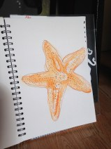ink and pen starfish