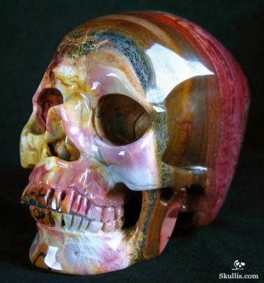 African-Petrified-Wood-Crystal-Skull-01