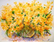mimosa-zaira-dzhaubaeva