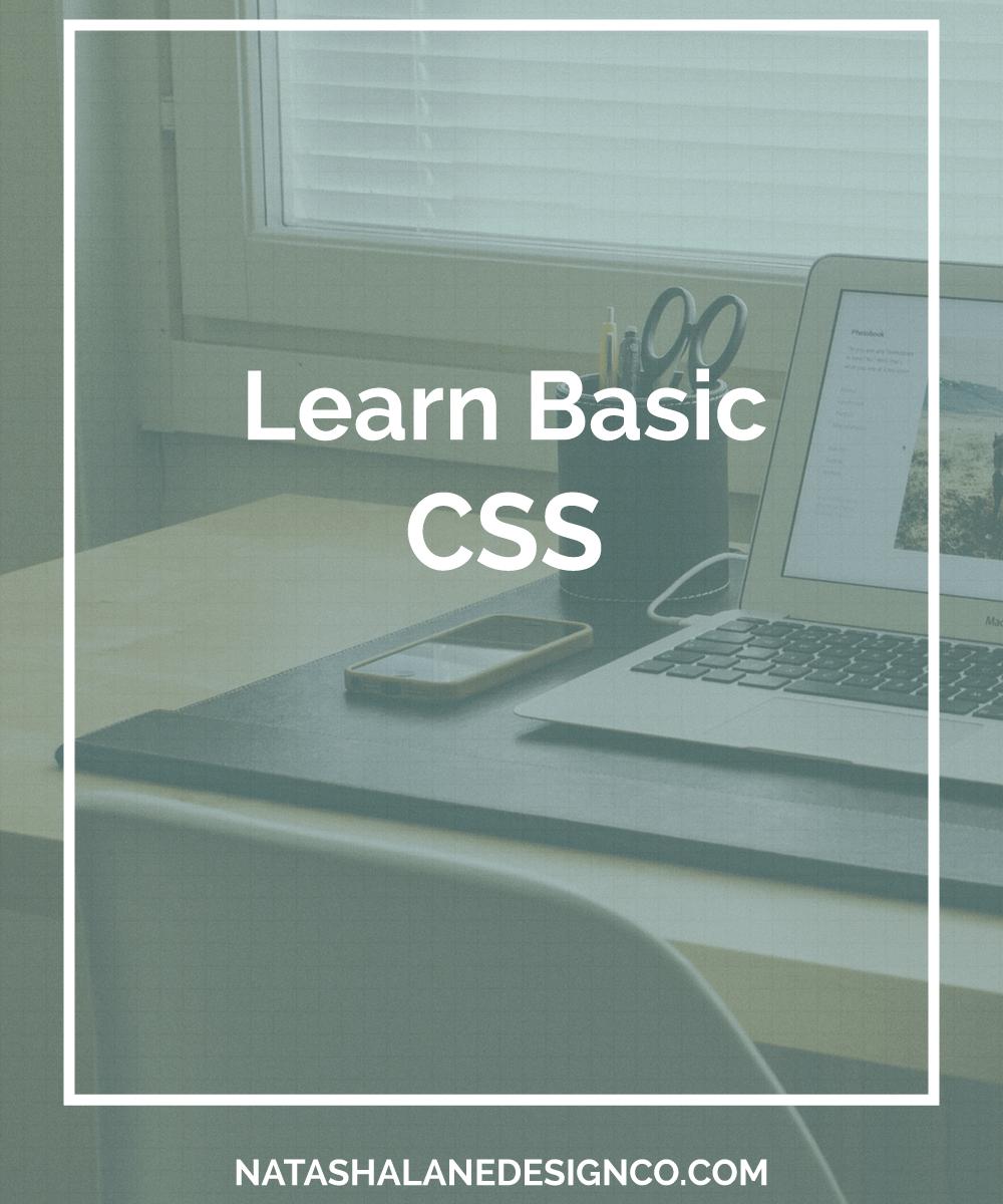 Learn Basic CSS