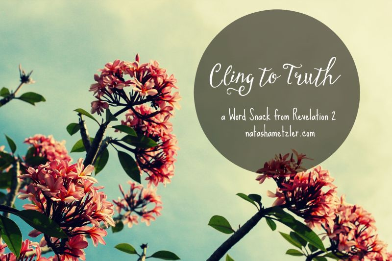 Cling to Truth #WordSnacks