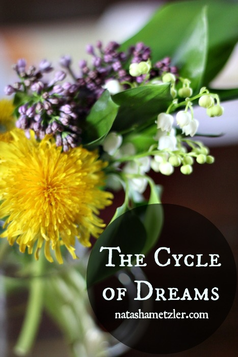 The Cycle of Dreams
