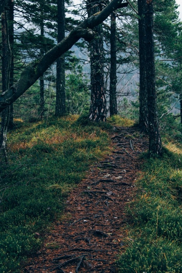 where to go when you feel lost