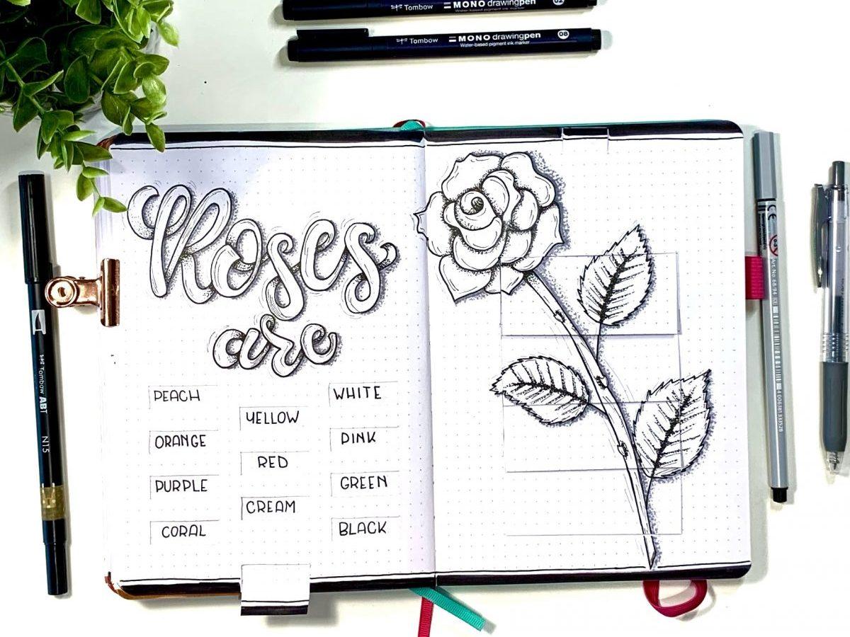 Roses Pull Tab