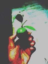 lime-hand