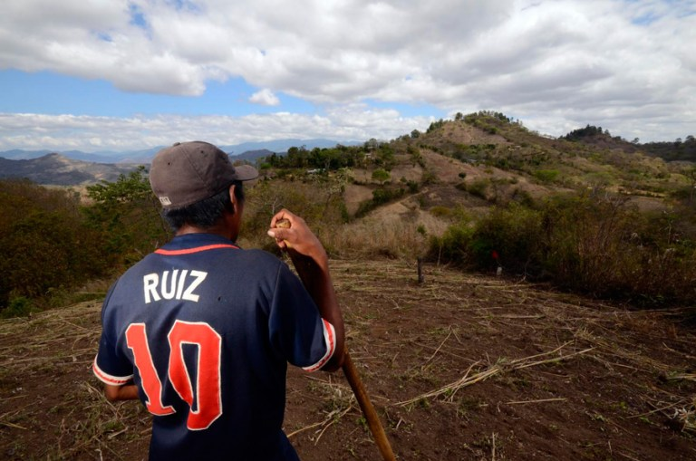 A maize farmer in Nicaragua takes a break from preparing his field for the planting season. (Courtesy Neil Palmer/International Center for Tropical Agriculture)