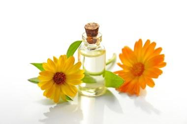 olie-bloemen