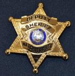 DeputySheriffLogo