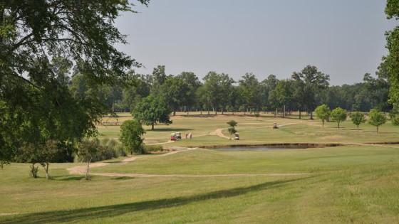 bonnette golf
