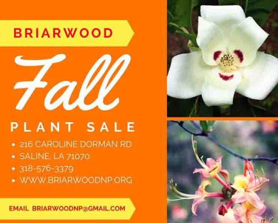 briarwood2016-1