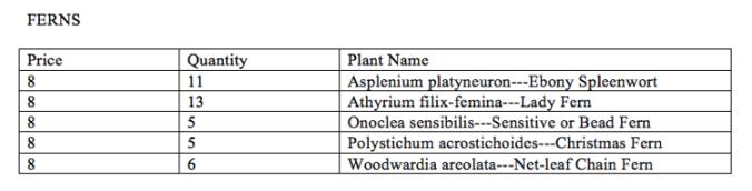 plantsale2016-5