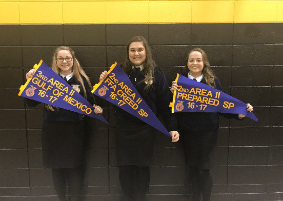 lakeview-ffa-2017