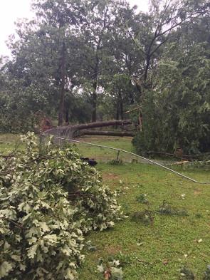 storm 2 2017 (2)