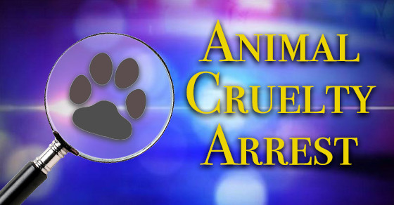 Animal Creulty Arrest