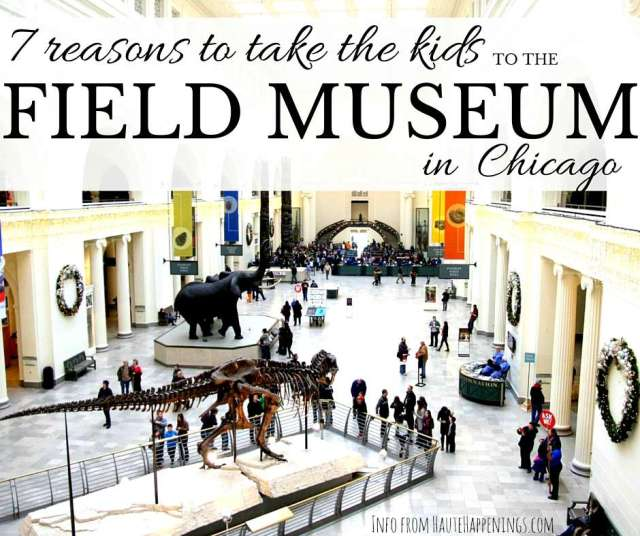 7 reasons to take the kids to the Field Museum in Chicago!