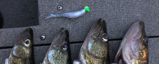 August Fishing Continues to be Solid in the Brainerd Lakes Area