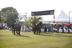 Makhong and King_s Cup Elephant Polo 2017 - 06