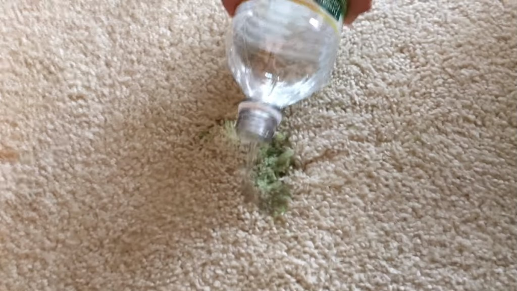How To Remove Slime From Carpet Nate And Jeremiah Design