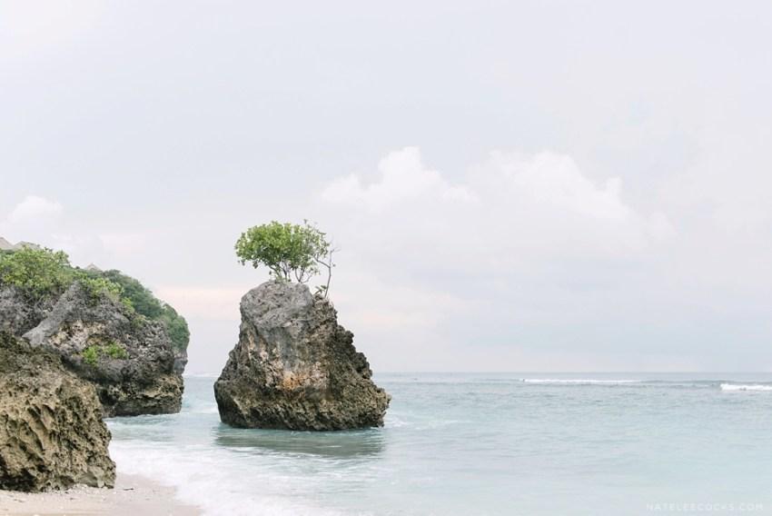 Bali2016_GOOD-47.1