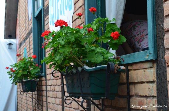 Flores Alemãs