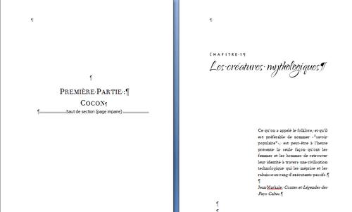 Mon aventure dans l'autoédition - 11. Le formatage - livre papier