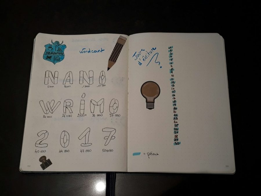 Nanowrimo 2017 - bullet journal
