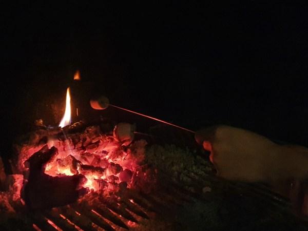 En train de faire griller des chamallows dans la cheminée le 31 décembre
