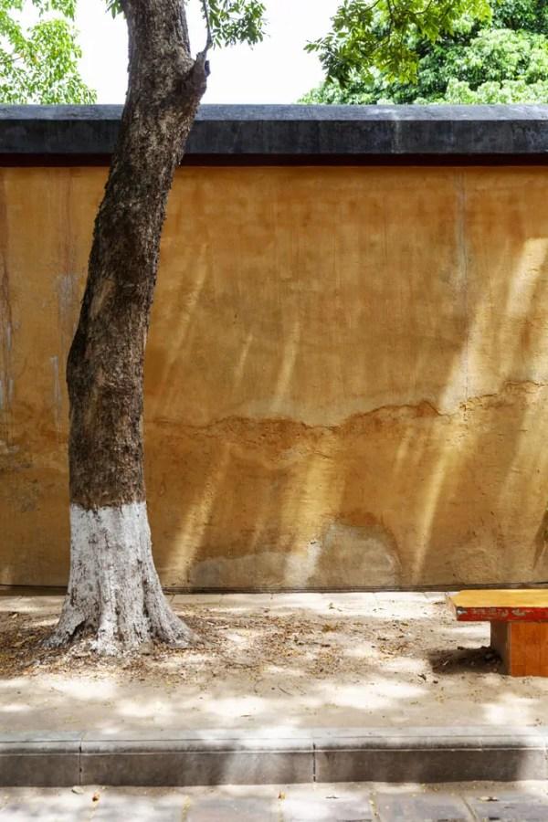foto in lijst boom muur